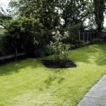 102-birchfields-road-garden