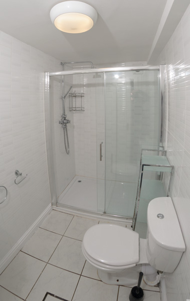 130 Dickenson Rd Bathroom-1