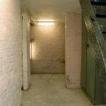 14-argyle-ave-cellar