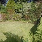 5-leighbrook-rd-garden2
