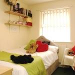 87d-wellington-rd-bedroom7