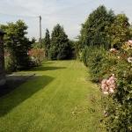 88-birchfields-rd-garden