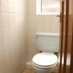 88-birchfields-rd-toilet